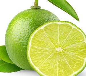 Lemon without seed